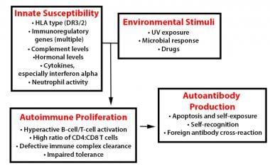 In systemic lupus erythematosus (SLE), many geneti