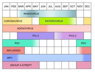 Seasonal variation of selected upper respiratory t