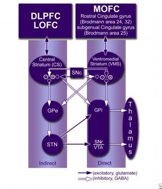 The associative thalamocortical loop. DLPFC = dors