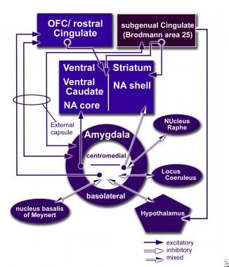 How neuromodulation at the cingulate gyrus (Cg25)