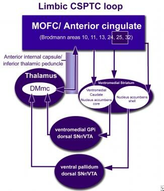 How neuromodulation at cingulate gyrus (Cg25) inte