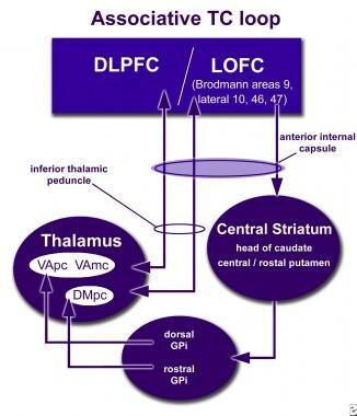 How neuromodulation at the anterior internal capsu