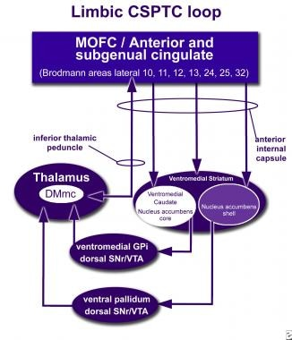 How neuromodulation at the nucleus accumbens (NA)