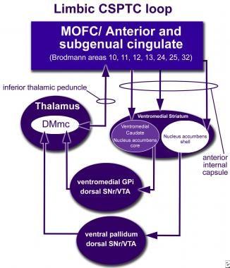 How neuromodulation at the ventral striatum (VS) i