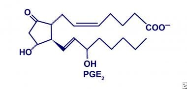 Prostaglandin E2 (PGE2).