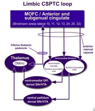 How neuromodulation at the inferior thalamic pedun