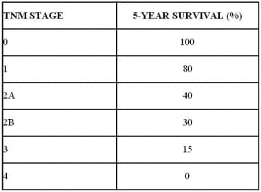 Five-year survival for esophageal cancer based on