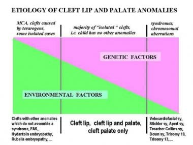 Etiology of cleft lip and palate anomalies.