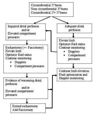 Decision-making algorithm for escharotomy in sever