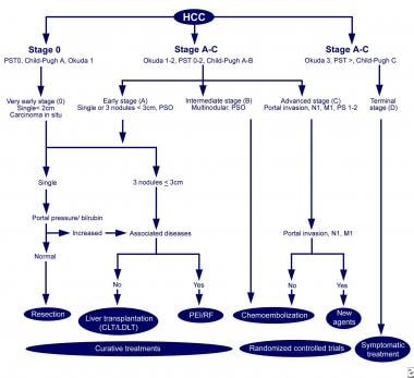 The Barcelona-Clinic Liver Cancer (BCLC) approach