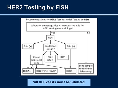 Nccn breast cancer guidelines update slides with transcript for Fish test for cancer