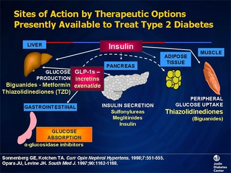 Inhaled Insulin Pulmonary Considerations Slides With