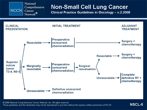 Nccn Clinical Practice Guidelines In Oncology Symposium