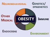 obesity and pregnant women outcomes Physical activity in pregnant women with class iii obesity:  impact of maternal obesity on perinatal and childhood outcomes  cambridge core to.