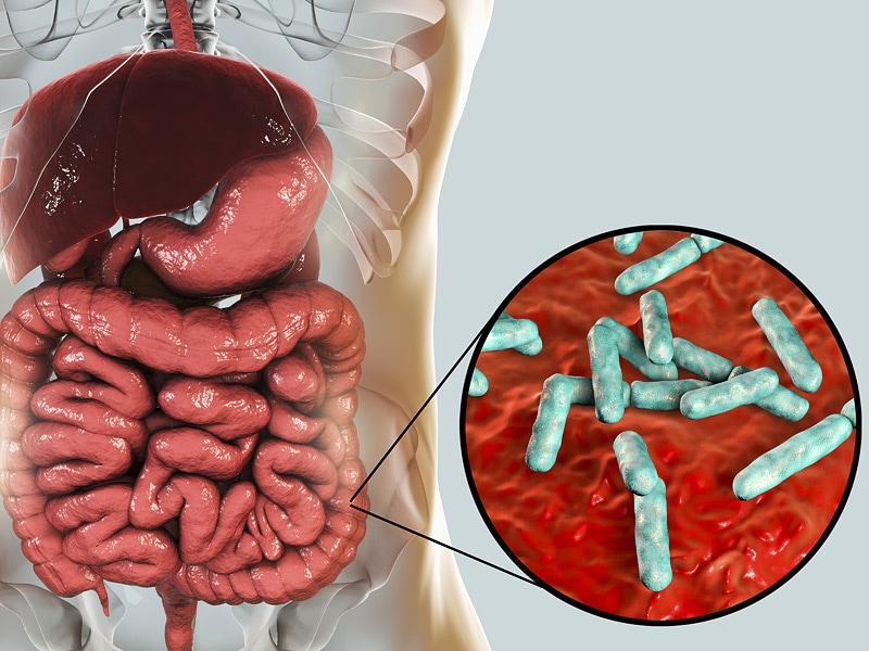 Microbiome Makeover: Out With the Bad, In With the Good?