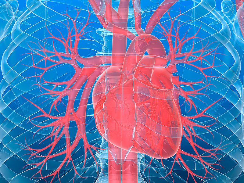 A New Oncology Target: The Heart