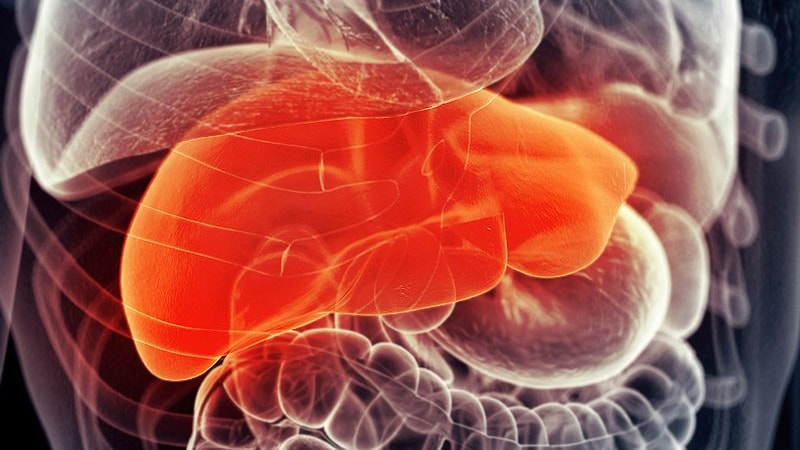 New Studies on Pediatric Liver Diseases