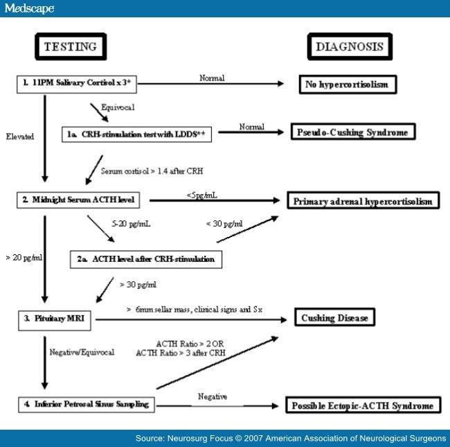 Dexamethasone Suppression Test Interpretation