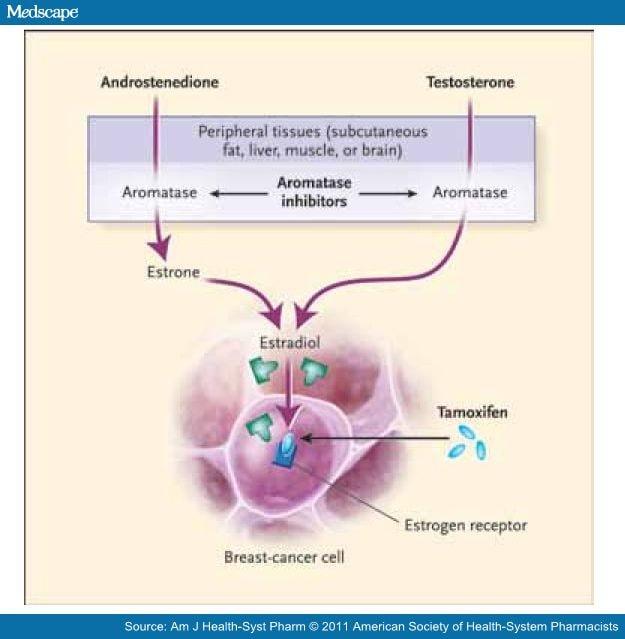 Famara breast cancer