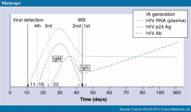Hiv testing the cornerstone of hiv prevention efforts - Antigene p24 periodo finestra ...