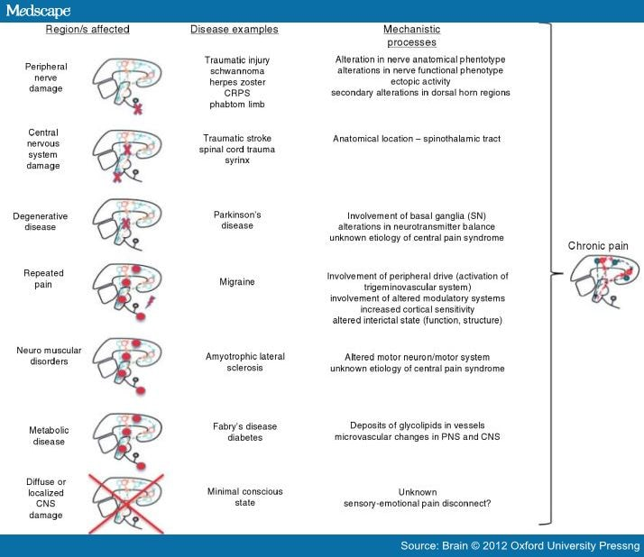 Neurological Diseases And Pain