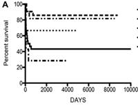 Outcome Of Hsct For Adenosine Deaminase Deficient Severe
