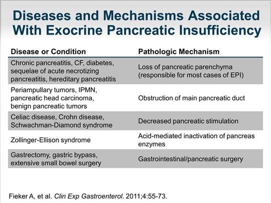 Current Challenges In Exocrine Pancreatic Insufficiency A