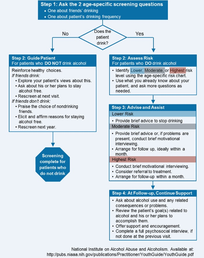 Guide Screening Intervention For A Practitioner's Alcohol And Youth Brief