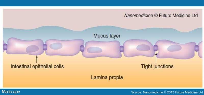 Strategies For Improving Mucosal Drug Delivery