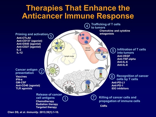 The Immuno-Oncology Revolution: Immune Checkpoint Inhibitors