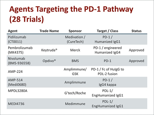 Immunotherapy: T-Cell Engaging Antibodies and Immune Checkpoint Blockade