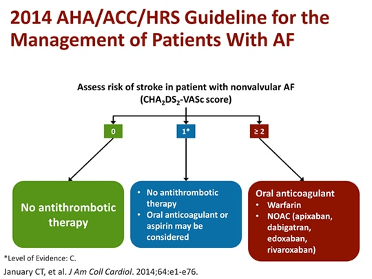 Stroke And Af What We Know And What We Want To Know Transcript