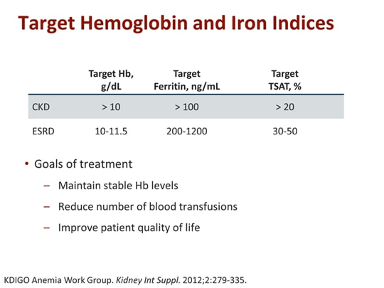 Obstacles and Advances in Anemia Management in Patients With