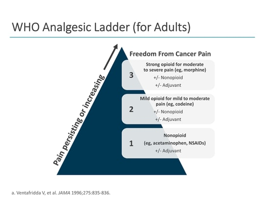 The Cancer Pain Journey: Optimizing Identification and
