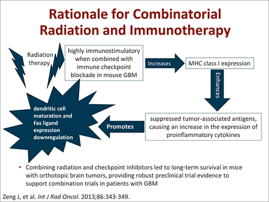 The Brain, Immune Privilege, and Immunotherapy: Proof in Concept
