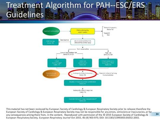 esc guidelines for treatment of pulmonary arterial hypertenion