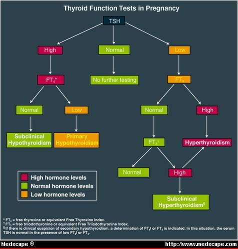 Perinatal Thyroid Dysfunction Prenatal Diagnosis And Treatment