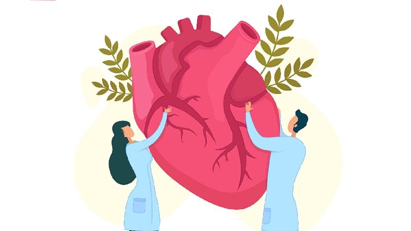 Comisión de la mujer y enfermedad cardiovascular para reducir la carga global para el 2030
