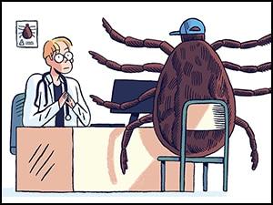 Lyme : des nouvelles recommandations mais pas la fin des polémiques…