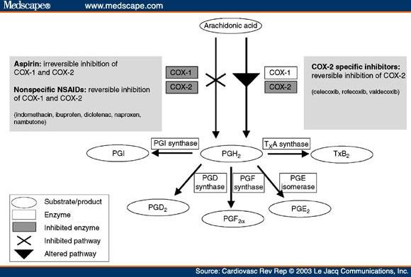 Cardiovascular Aspects Of Prostaglandin Inhibition