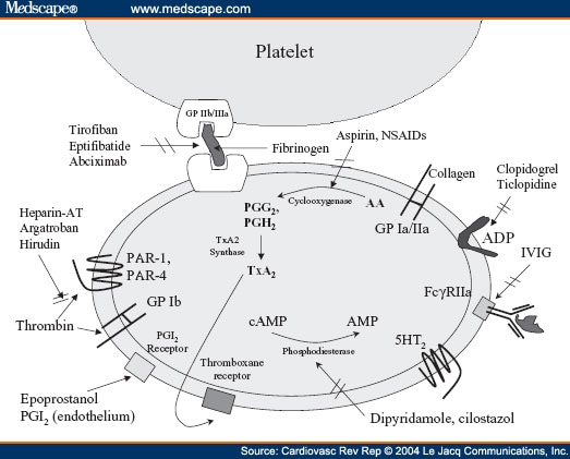the clinical utility of antiplatelet drugs revisited