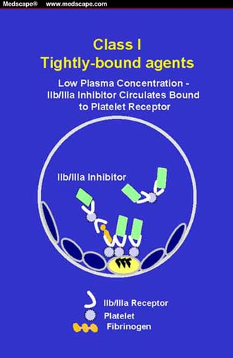 The Success and Failure of Glycoprotein IIb/IIIa Receptor
