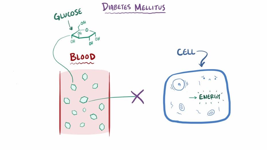 Osmf patogénesis de la diabetes