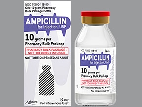 ampicillin 10 gram solution for injection
