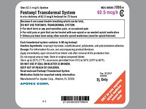fentanyl 62.5 mcg/hour transdermal patch