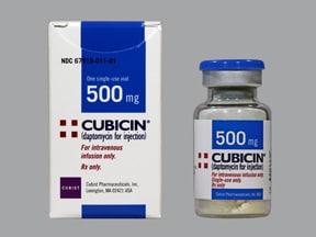 Cubicin 500 mg intravenous solution