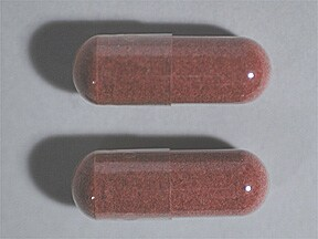 cranberry extract 500 mg capsule