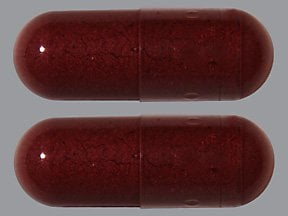 red yeast rice 600 mg capsule