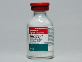 TAZICEF 1 gram solution for injection
