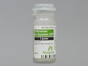 ceftriaxone 2 gram intravenous solution